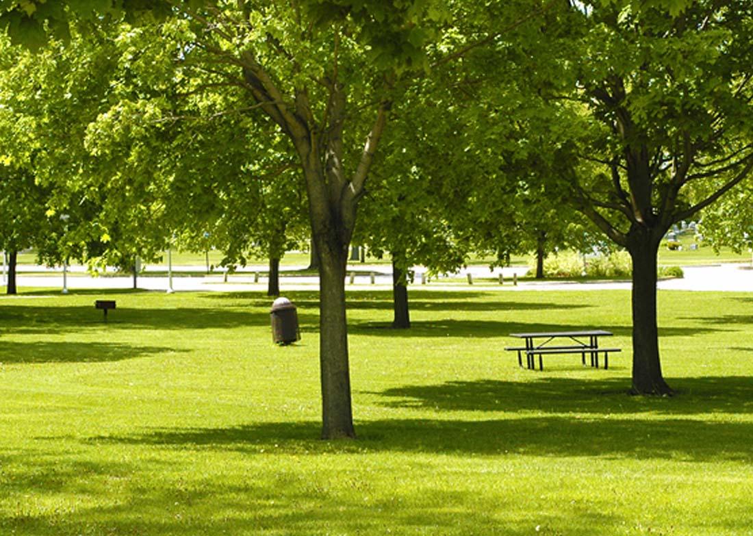 best-parks-gardens-in-gurgaon