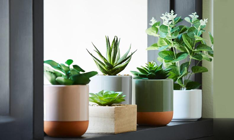 best-artificial-plants-in-gurgaon
